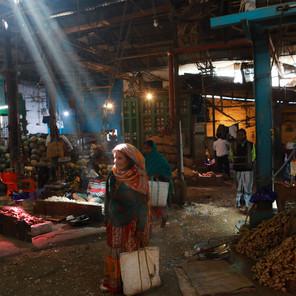 Zousmer Color India 4