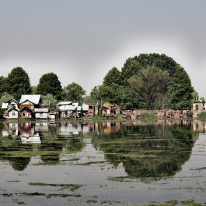 Zousmer Kashmir 37