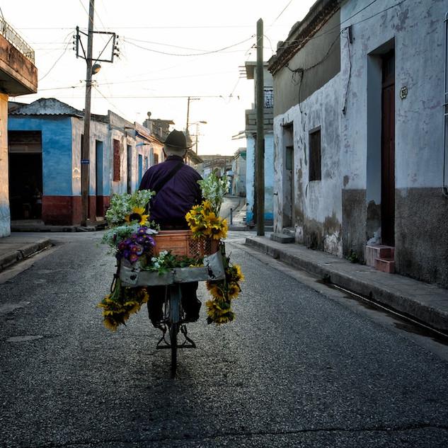 Zousmer Cuba 13