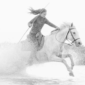 Zousmer Horses of Camargue 11