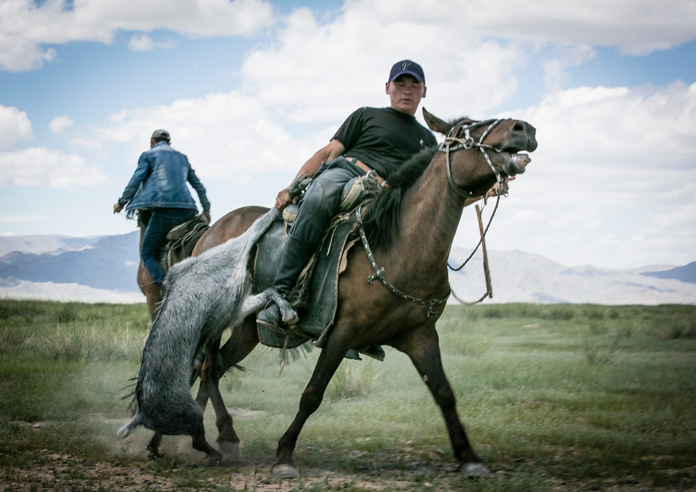 Mongolian holds on to goat