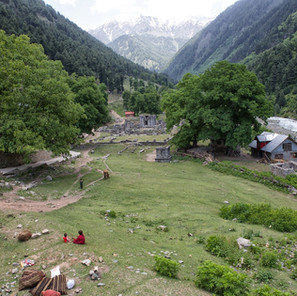 Zousmer Kashmir 50