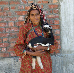 Zousmer Kashmir 14