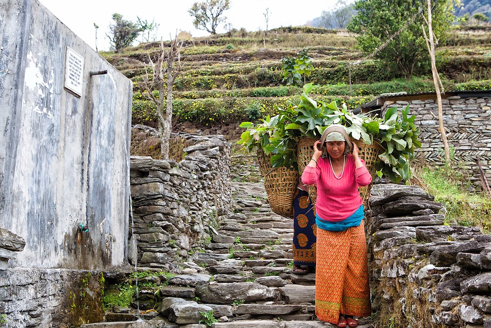 Woman carrying baskets full of leaves down steps
