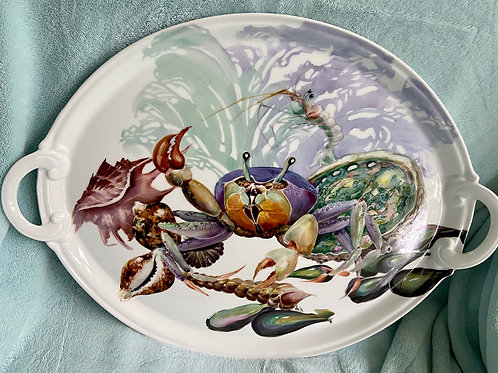 Large Tray of Shells and a Crab with Sea Fan Background