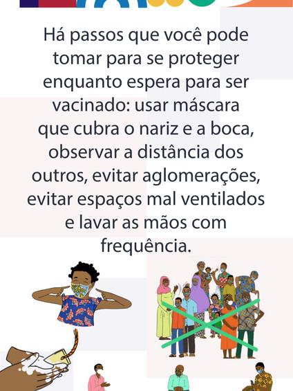PortugueseVax_13.jpg