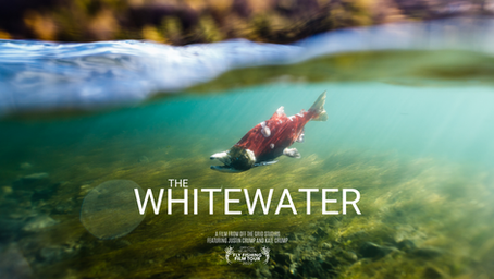 The Whitewater Trailer