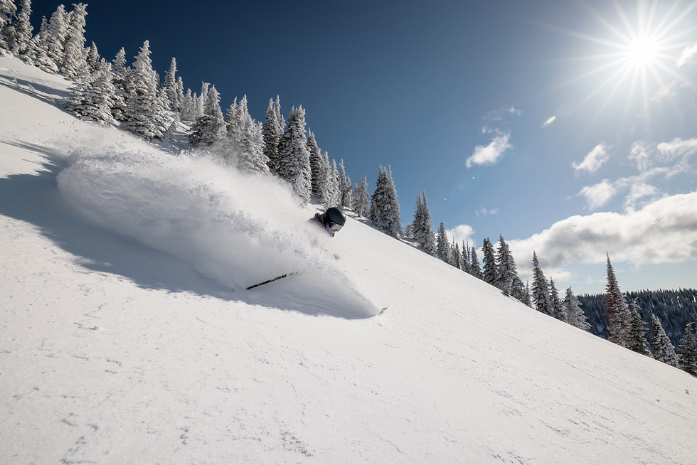2021_MARCH_WP_WHITEFISH-12.JPG