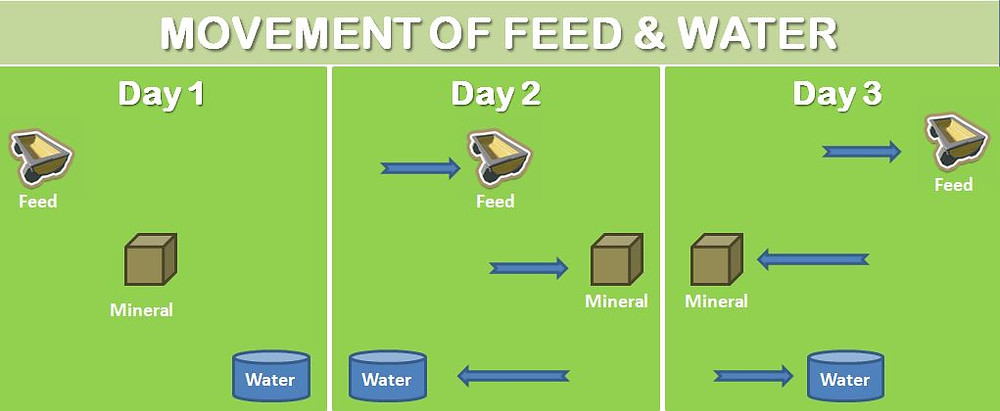 move feed and water continuous grazing livestock