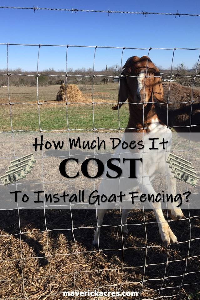 Cost to Install or Build Goat Fence