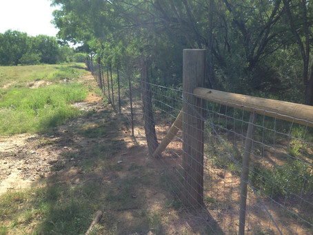 11 Ways to Save Money on Livestock Fencing (Without Sacrificing Quality)