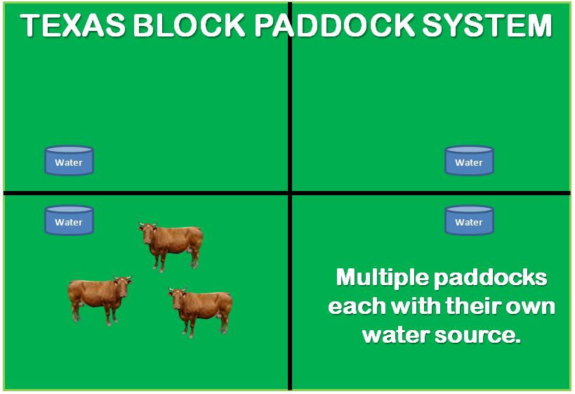 texas block paddock system
