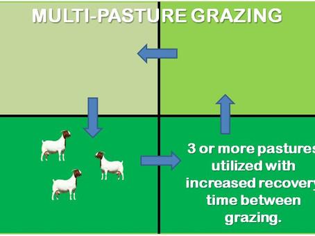 Pasture Grazing Management Methods