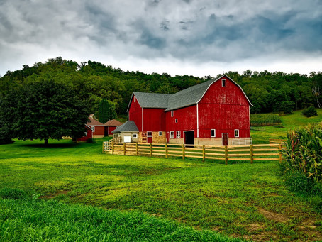 Should You Buy or Rent Farm Land?