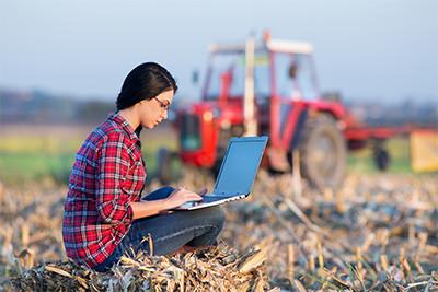 Small Farm Business Plan Homestead