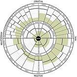 Leadership Circle 360 Profile Example