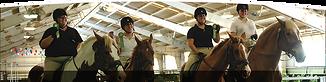 Florida Equestrian Special Olympics .png