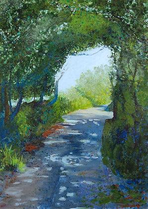 'The Lanes, Summer, Sherkin', Acrylic on Canvas