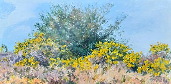 'Scrub (Valuable Habitat) March', Oil on Canvas (framed)