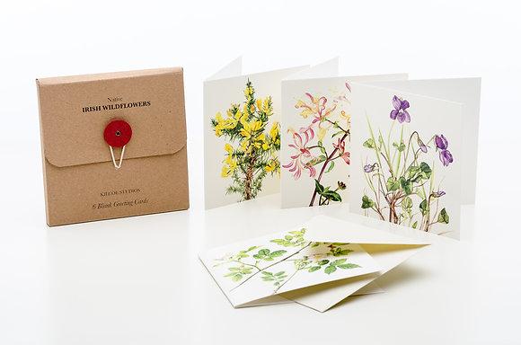 'Wildflowers' Greeting Cards, Sonia Caldwell - Kilcoe Studios