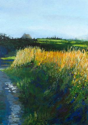 'Last of the sun, heading to the beaches, Sherkin', Acrylic on Canvas