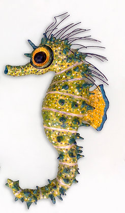 'Lough Hyne Seahorse Female', Ceramic Wall Sculpture