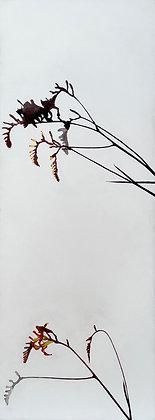 'Lucifer', Acrylic on Canvas Drawing (framed)