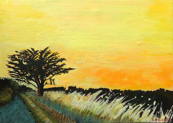 'Golden', Acrylic on Canvas