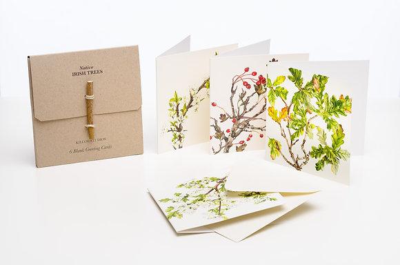 'Native Trees' Greeting Cards, Sonia Caldwell - Kilcoe Studios