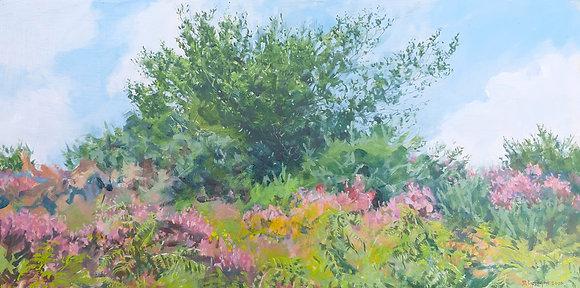'Scrub (Valuable Habitat) August', Oil on Canvas (framed)