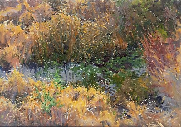 'Boggy Pool', Oil on Canvas (framed)