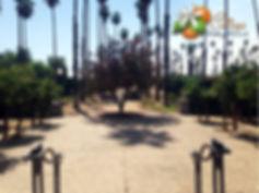 Loft 84 Sister Venue, Citrus Park Wedding and Events in Riverside, CA