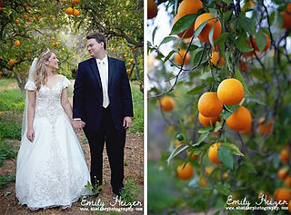 Citrus Park Weddings and Events