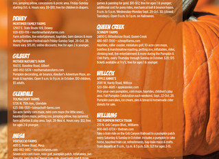 Discover AZ with the Raegen Johnson Group...Mortimer Farms Pumpkin Patch and Hay Maze