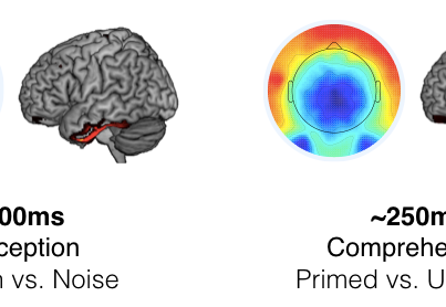 The N400 and disorders of consciousness [New paper]