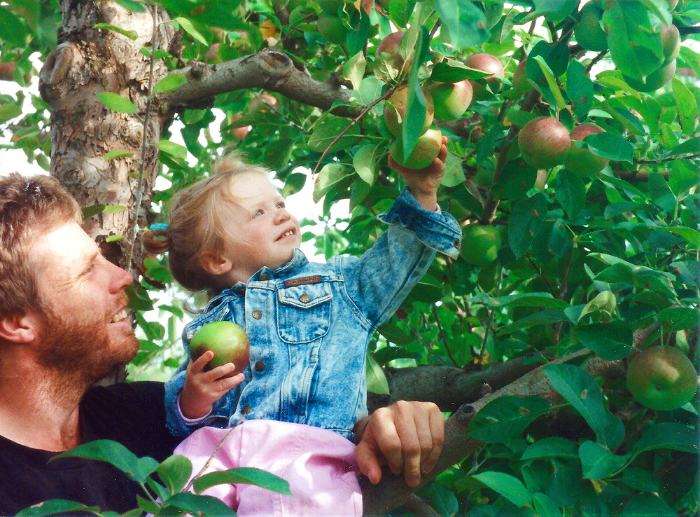 dad and daughter apple picking