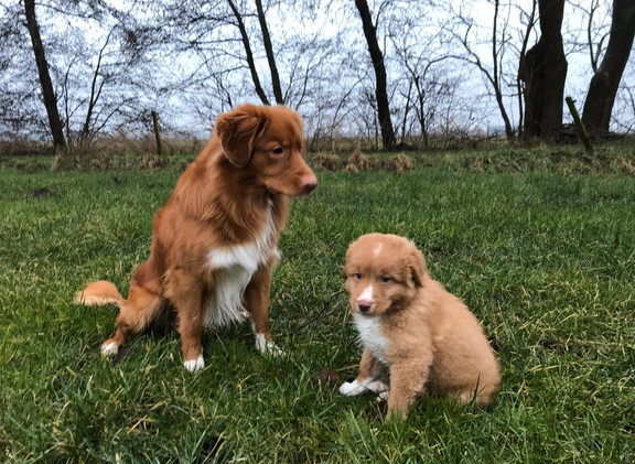 Otje en kleine broer okke