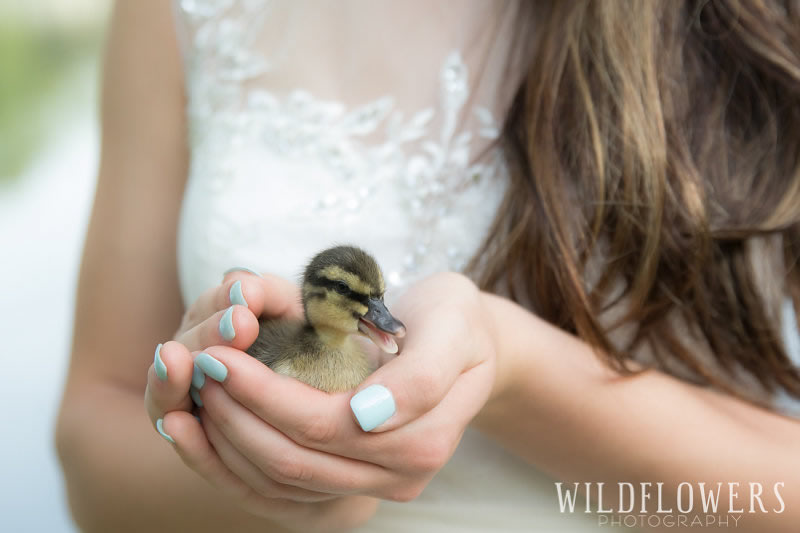 Easter_Sunday_At_Menagerie_Farms-Duckling