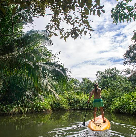 Tranquilo Bay Kayaking in Panama