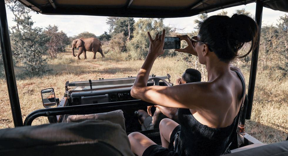 zambezi crescent collection_victoria falls river lodge_game drive_go2africa.jpg