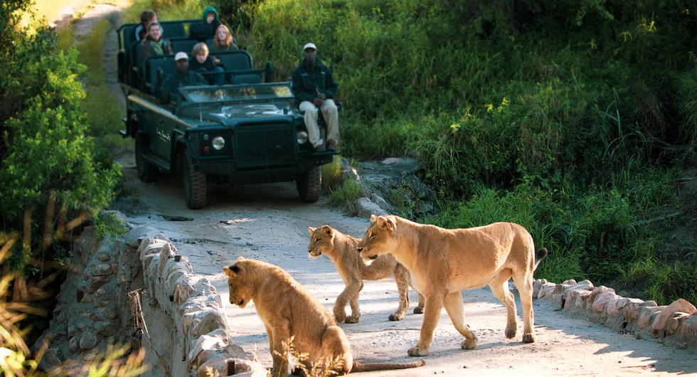 more family collection_lion sands narina lodge_game drive_go2africa.jpg