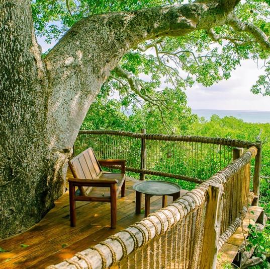 Chole_minji_treehouse_deck