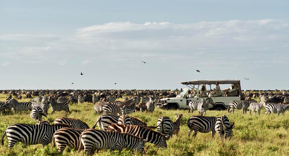 sanctuary retreats_kusini_game drive_go2africa.jpg