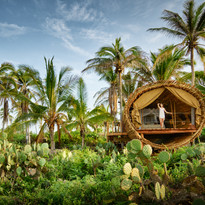 Playa Viva Treehouse PC: Kev Steele