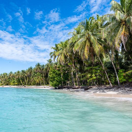 Tranquilo Bay Panama Coastline
