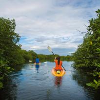 Tranquilo Bay Kayaking