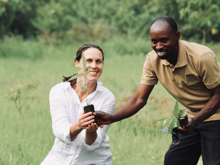 A Press Trip to Uganda for Chimp Trekking Delivers More Than Just Great Coverage in Travel + Leisure