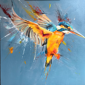 Kingsfisher hovering