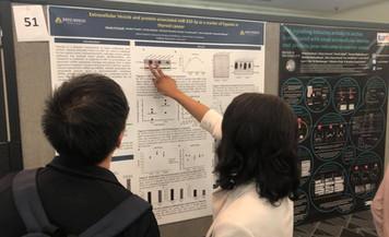 Bonita presenting her poster at MRS