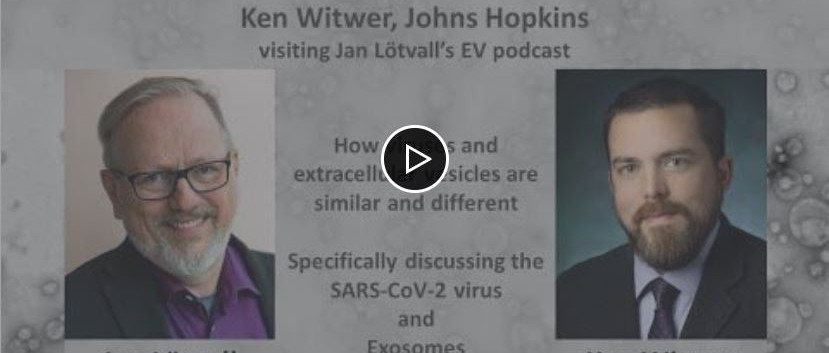 Is COVID-19 virus an Exosome? Ken Witwer+Jan Lötvall - the extracellular vesicle angle